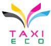 Logo taxi eco villeurbanne